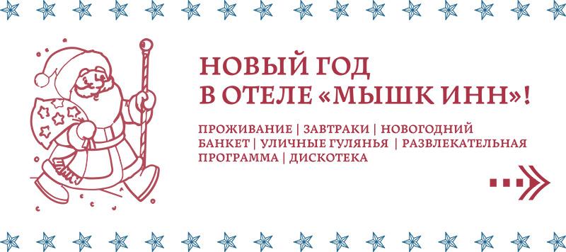 Новый Год 2021 в отеле «Мышк Инн»!